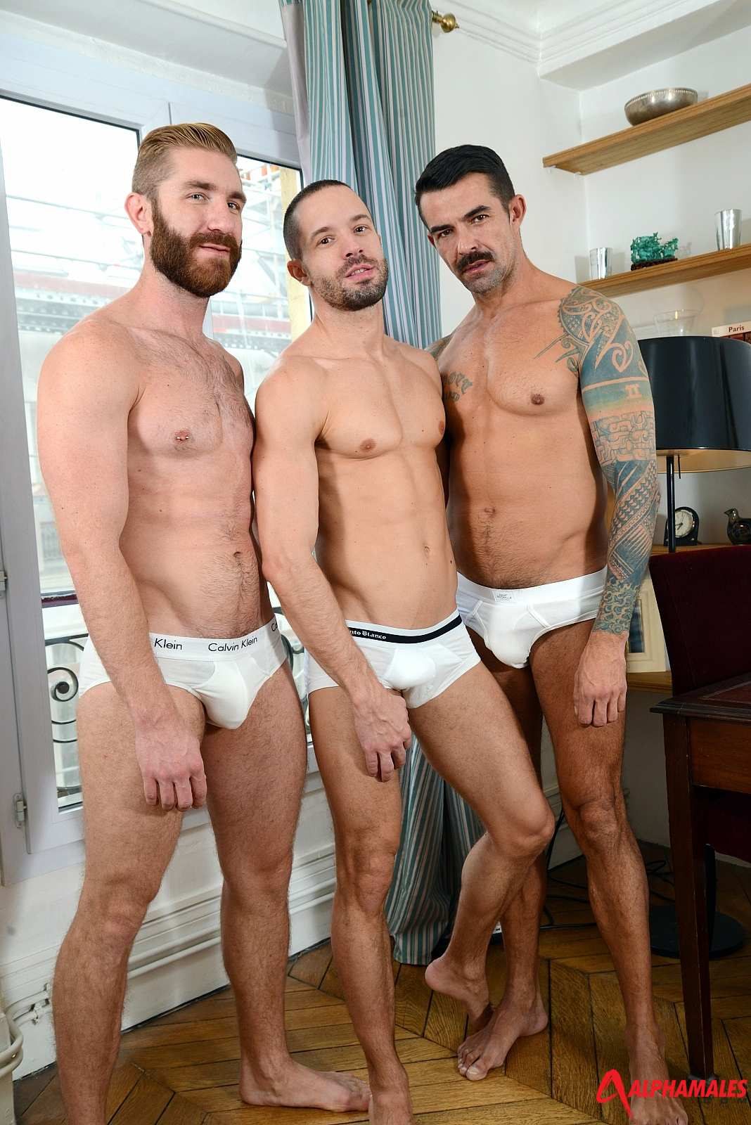Geoffrey Paine and Joe Gunn in a threesome with Tony Axel for gay porn site Alpha Males